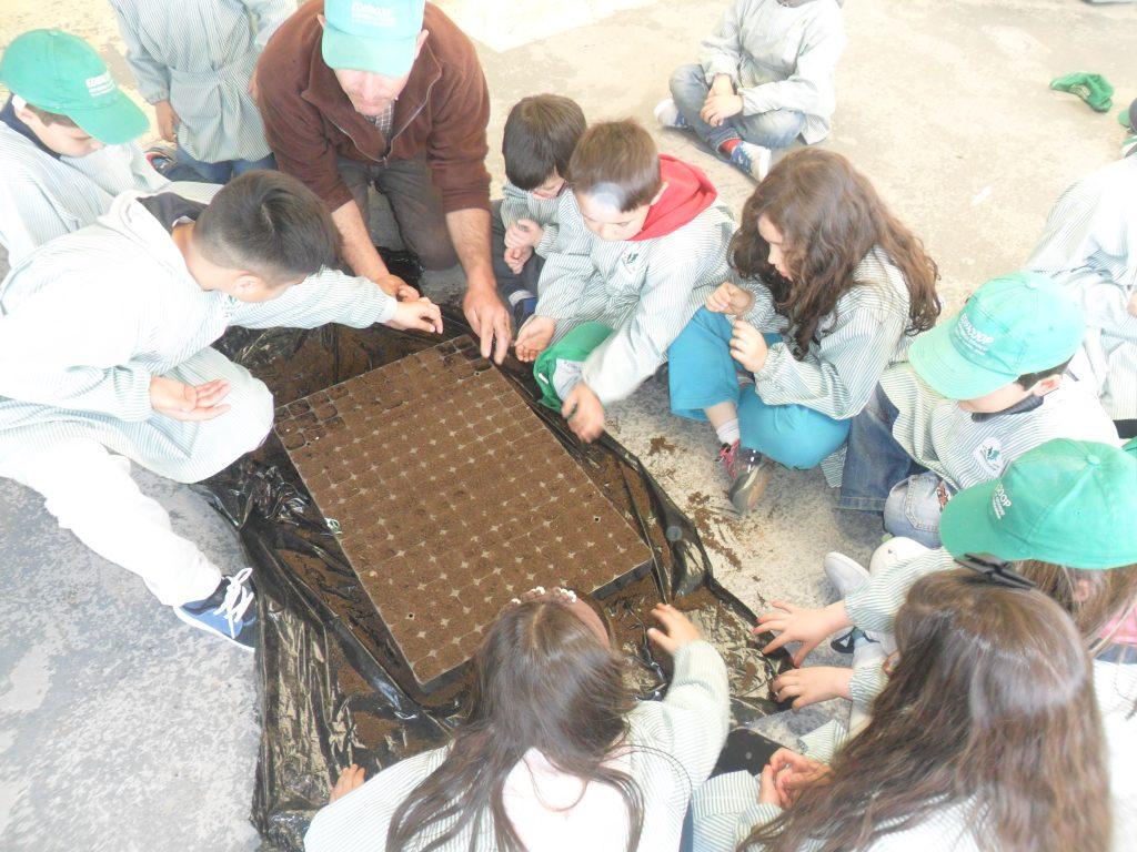 Eco-Escolas - 10 - Edifacoop